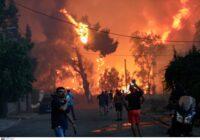 Κάλεσμα του ΠΑΜΕ για αλληλεγγύη στους πυροπαθείς και διαρκή επαγρύπνηση